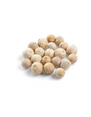 grain de poivre blanc