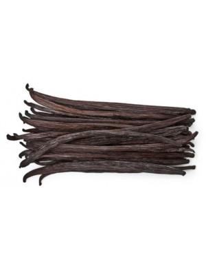 Papua New Guinea vanilla