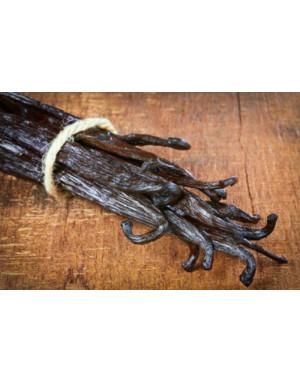vanille bourbon des Comores