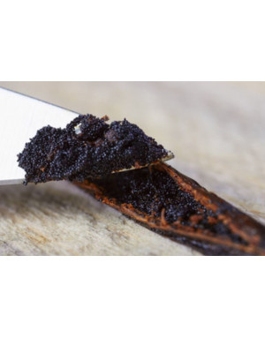 Sambavanilla Comoros vanilla