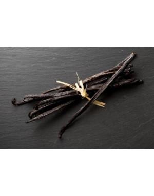 Gousses de vanille des Comores taille XL