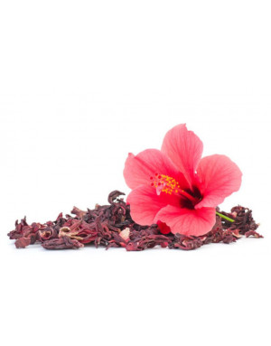 dried hibiscus flowers from Egypt
