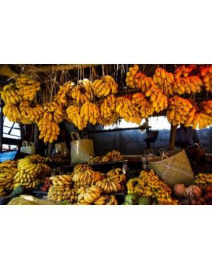 bananas from Madagascar.