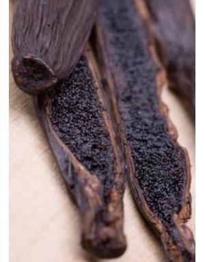 Vanille noire bourbon