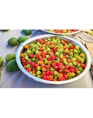 Whole Majungais chili peppers