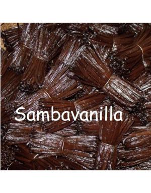 Gousses de vanille fraîches
