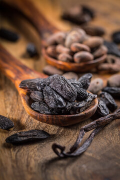 fèves de cacao concassées Sambavanilla