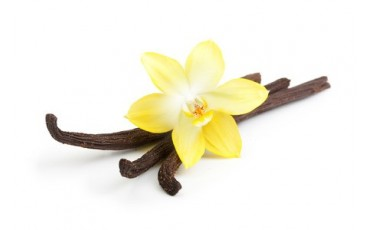 Our vanilla beans selection
