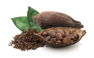 Cocoa bean, a healthy and powerful ingredient