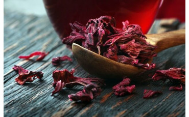 Hibiscus flower: All you need to know about this plant ?
